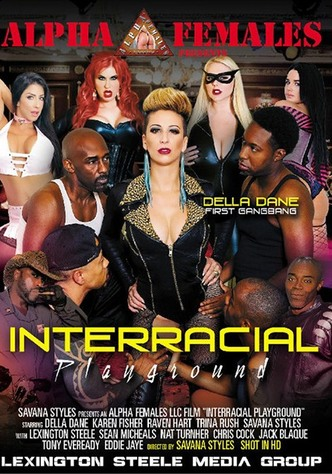 Interracial Playground