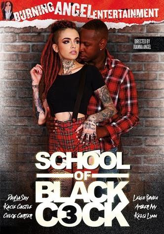 School Of Black Cock 3
