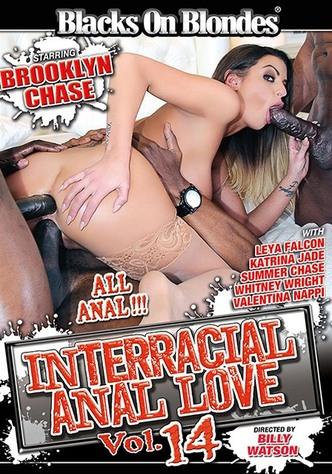 Interracial Anal Love 14